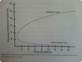 A graph that shows the rate of diminishing improvement in maximal strength as duration of exposure to unchanging stimulus increases.